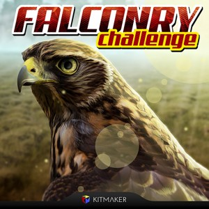 Falconry Challenge